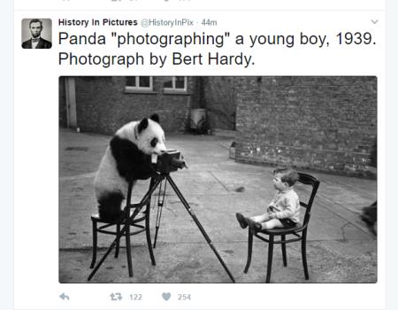 20170314 panda photographing boy